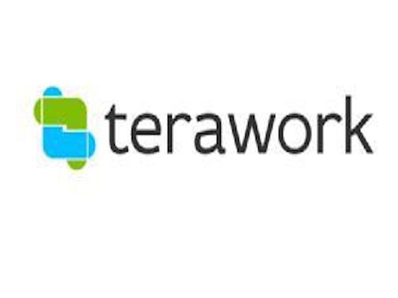 Post-Lockdown: TERAWORK Says Platform To Help Businesses Rebound