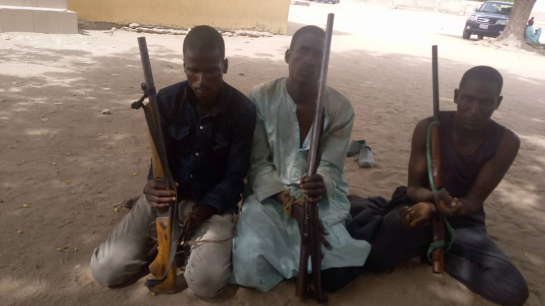 Adamawa Police Command Arrests Kidnappers, Robbers